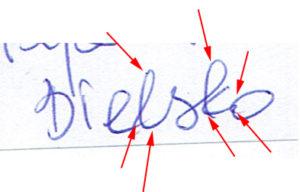 Ekspertyza porównawcza pisma ręcznego - zdjęcie